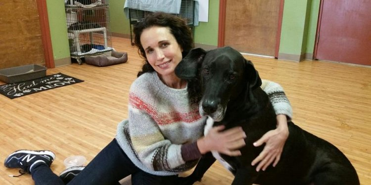 Actress Spends Holiday At SPCA