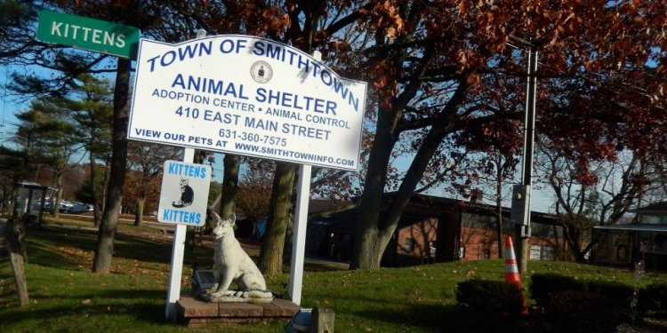 Oyster Bay Animal Shelter