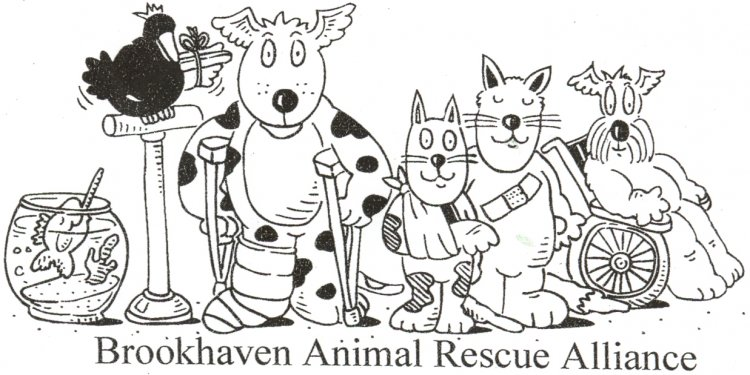 Brookhaven Animal Rescue