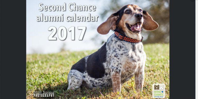 Second Chance Alumni Calendar