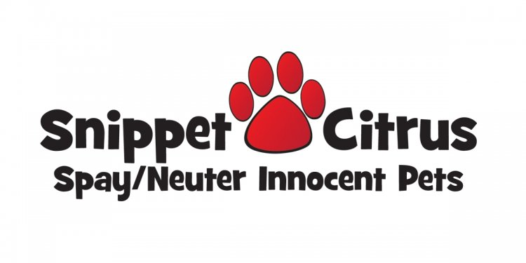 Cat and Dog Spay / Neuter