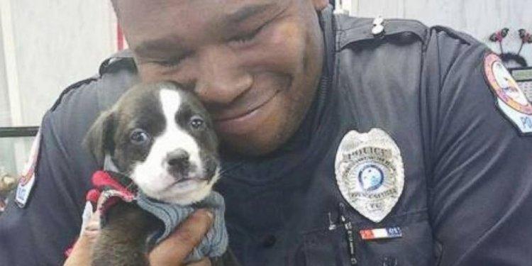 Call at Animal Shelter and