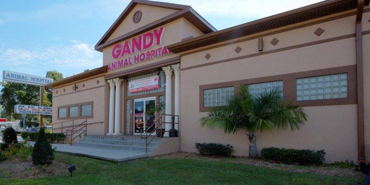 Gandy Animal Hospital
