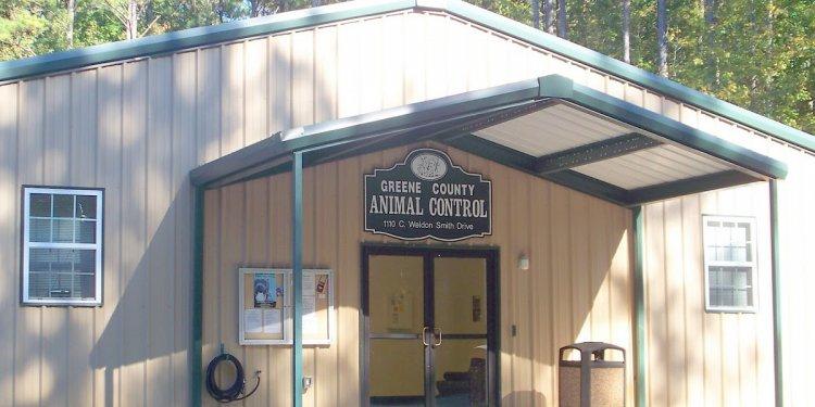 Store: ANIMAL CONTROL GREENE