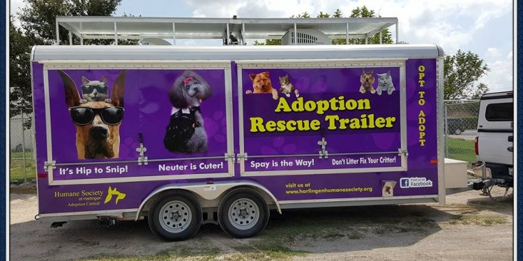 Adoption trailer