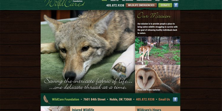 Home | Wildcare Foundation