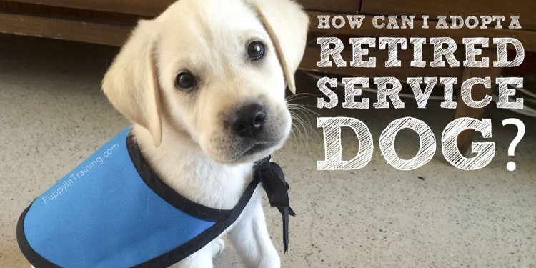How to adopt a retired service
