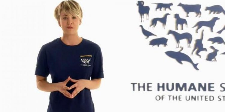 Humane Society, Stop Cruelty