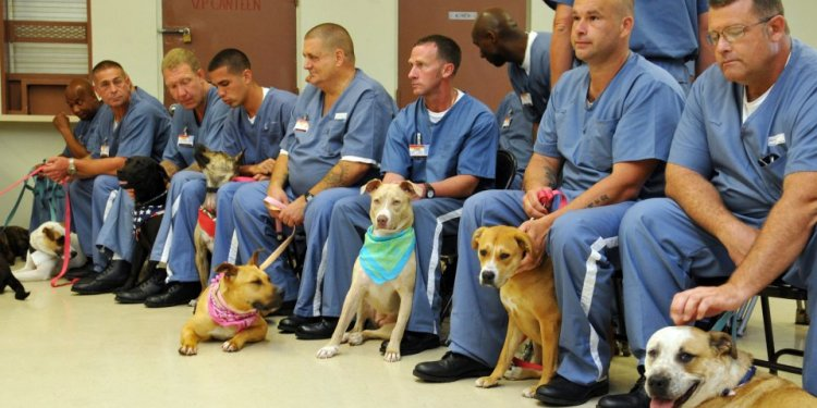 The Halifax Humane Society