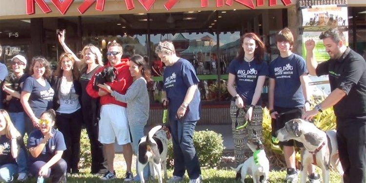 Kosmos Hair & Big Dog Rescue