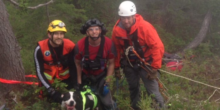 North Shore Rescue save a dog