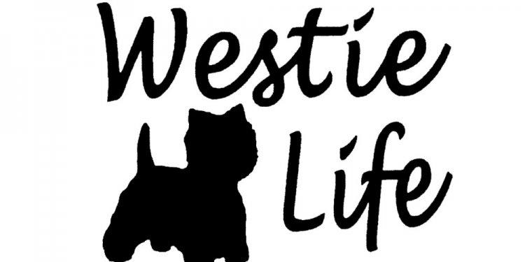 Pet Cartoon West Highland
