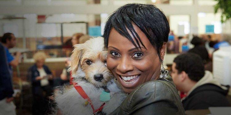 Pet Adoptathon 2016 - Search