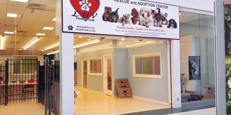 The new Pets4Luv location in