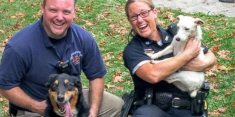 Police Rescue 2 Dogs Trapped