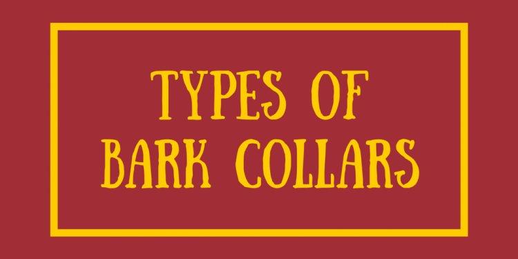 Types of Bark Collars