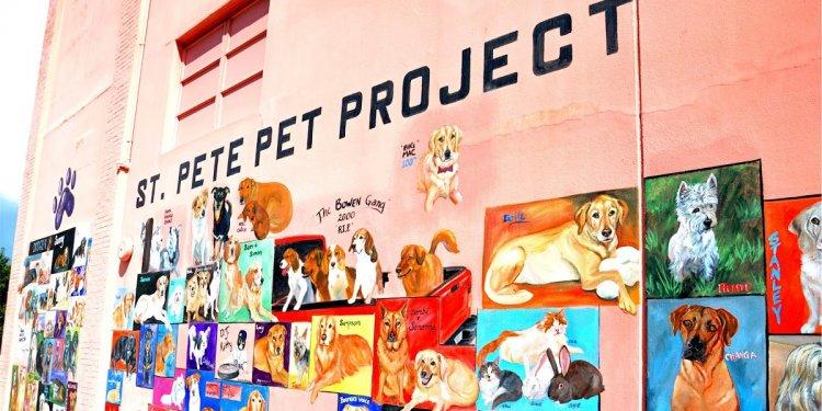 St. Pete Pet Project | St