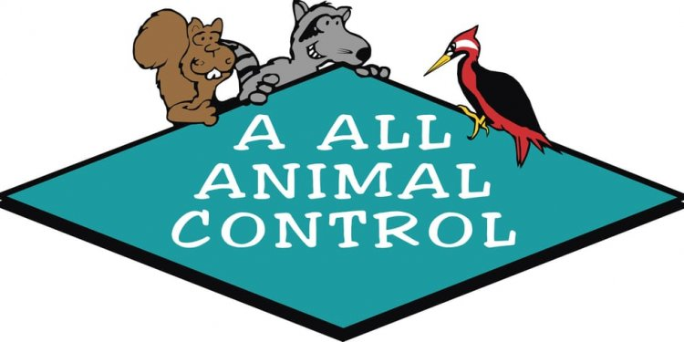 Photo of A ALL Animal Control