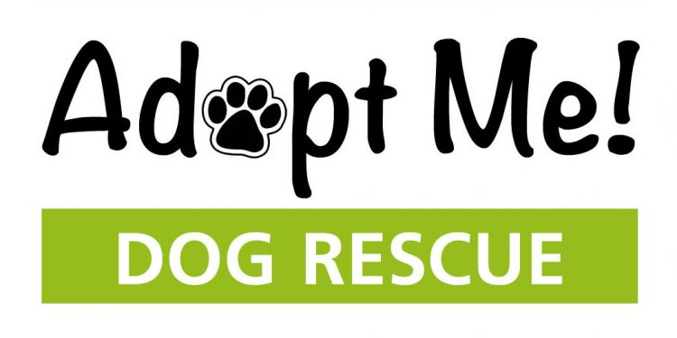 Pet Adoption Logo