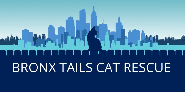 All Tails Rescue