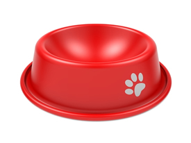 dog-food-bowl