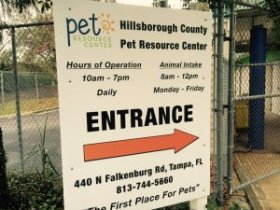 Hillsborough County pet resources