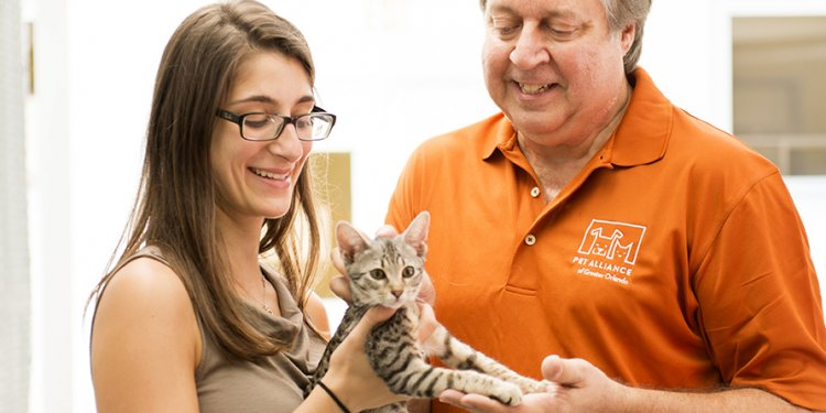 Pet Adoption Orlando Florida