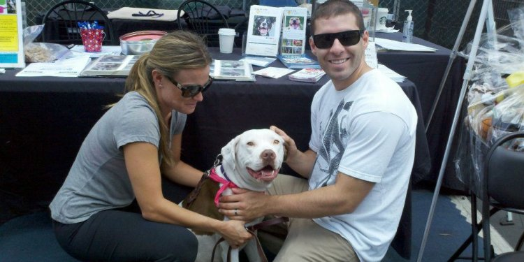 Orange County Dog Rescue Groups