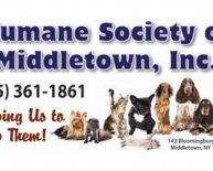 Humane Society Orange County NY