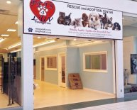 Pet Rescue and Adoption Center