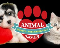 Save the animals Rescue