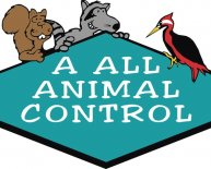 Tampa Bay Animal Control